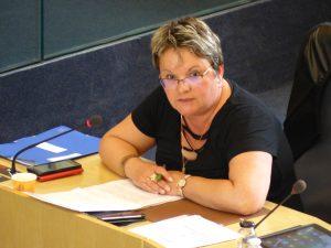 Nouveaux projets sociaux de territoire, Sophie Hervé réclame un bilan de la réorganisation des services en charge des solidarités opérée par la majorité