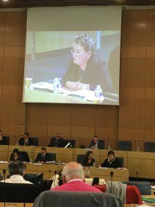 Protocole départemental 2019-2021 de prévention et de lutte contre les violences faites aux femmes