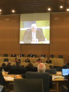 Politique départementale en faveur des activités économiques des territoires et amendement du groupe communiste adopté